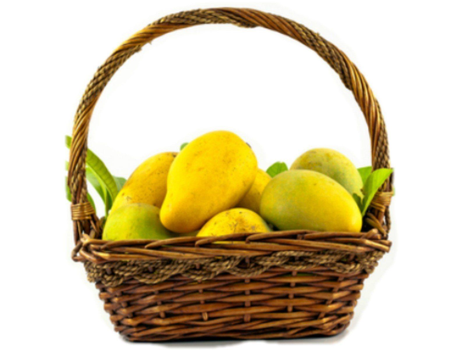 shopping shop best sellers various colors Mango Basket