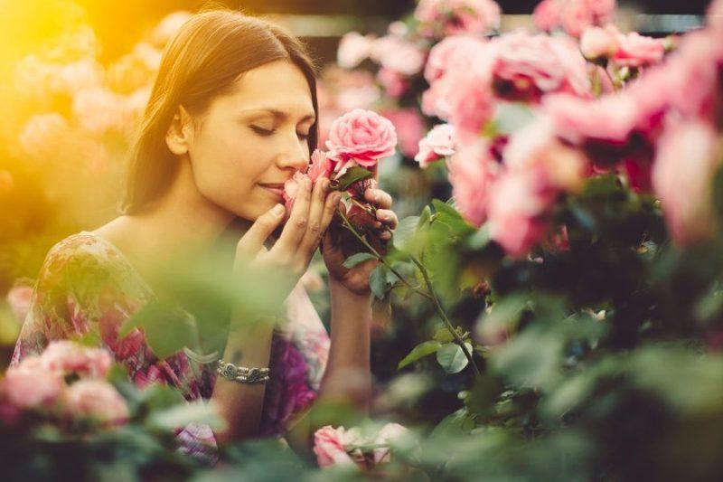Enhance Mood Trough Fresh Flowers - Send Fresh Flowers Online, Flower  Delivery in Pakistan - The Flower Studio